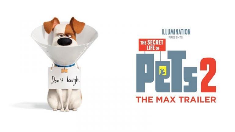 The Secret Life Of Pets 2 เรื่องลับแก๊งขนฟู 2