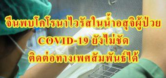 จีนพบโคโรนาไวรัสในน้ำอสุจิผู้ป่วย COVID-19 ยังไม่ชัด ติดต่อทางเพศสัมพันธ์ได้